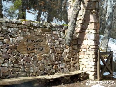 Hayedo Montejo; Reserva Biosfera Sierra Rincón; excursiones de senderismo; viajes senderismo madrid
